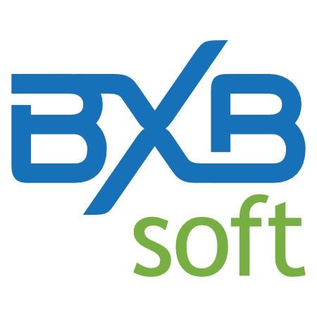 BXB BI